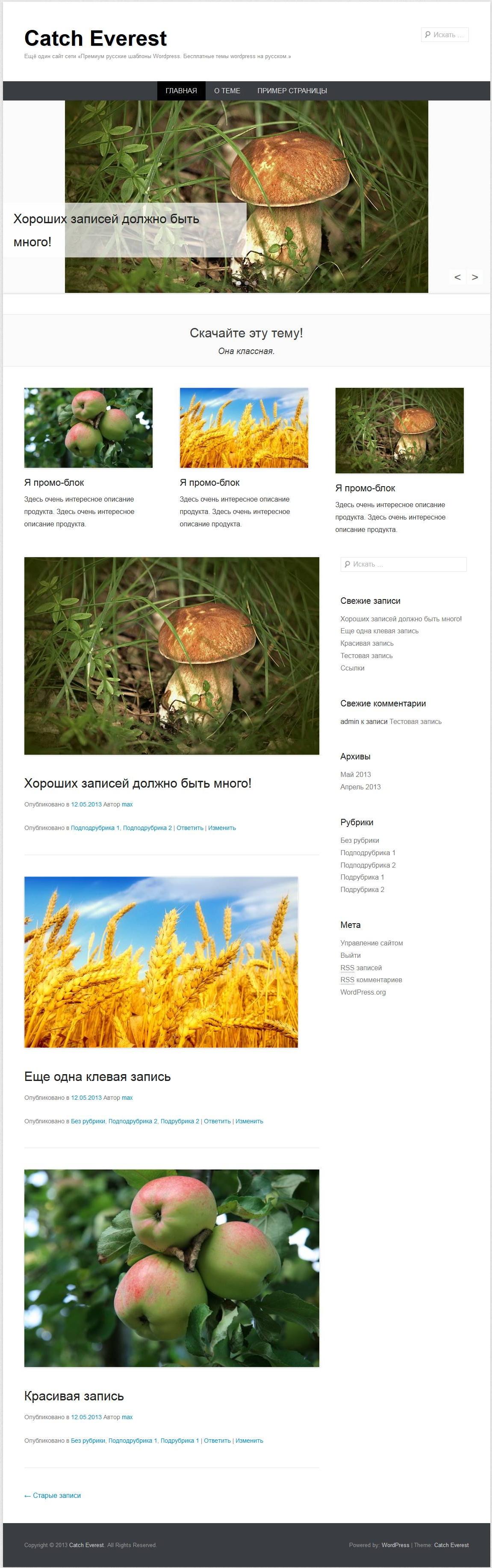 Catch Everest - русский шаблон wordpress