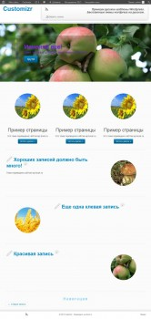 Customizr - русская тема wordpress