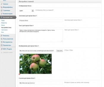 Discover - настройки темы wordpress