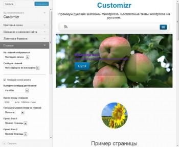 Customizr - настройки русской темы wordpress
